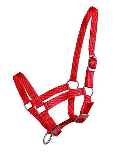 QHP Nylonhalfter Fohlen-Halfter 3fach verstellbar stark (Pony-Fohlen, Rot)