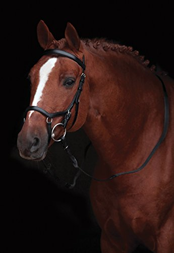 Rambo Micklem Competition Bridle WB bk -