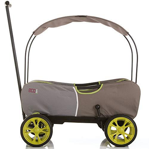 41dUb7m0sML - Hauck - Carro Eco móvil para niños de 2 - 6 años, Color Verde (T93108)
