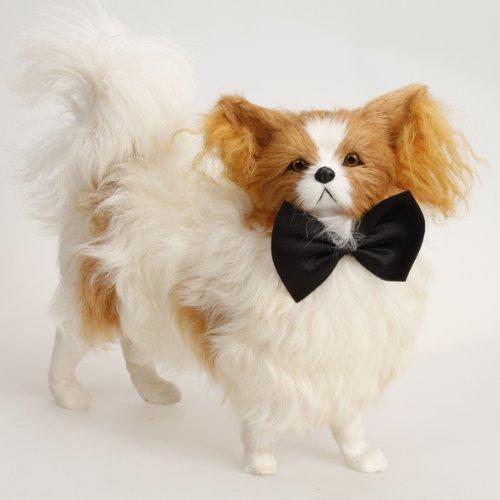 Haustier Hund Katze Fliege Krawatte - (Niedlich Schwarz Kostüme Alle)