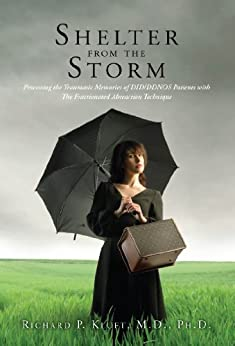 A Shelter In The Time Of Storm (Paperback Book)