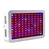 300W Potenza 100 Pezzi LED Lampada Per La Crescita Delle Piante Illuminazione Dell'acquario Ampia Area Di Esposizione I Fiori Delle Piante Da Interno A Bassa Energia Coltivano La Luce Con Imbragature