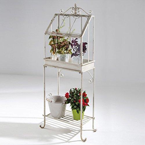 Verdelook flower house, mini-serra 55x30x140 cm, fioriera con espositore per fiori da giardino e balconi