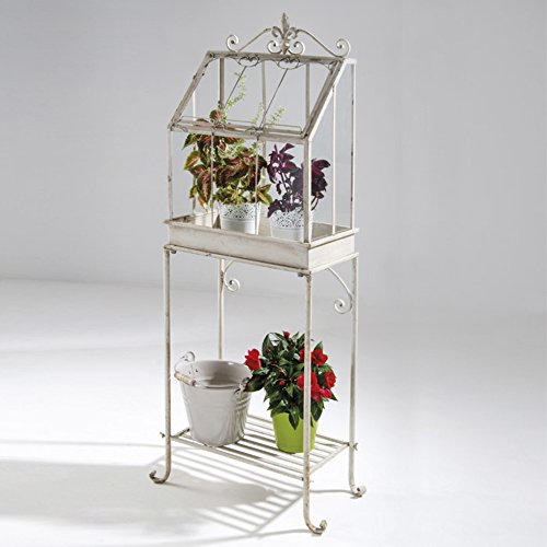 VERDELOOK Mini-serra Flower House 55x30x140cm, fioriera espositore fiori giardino balconi