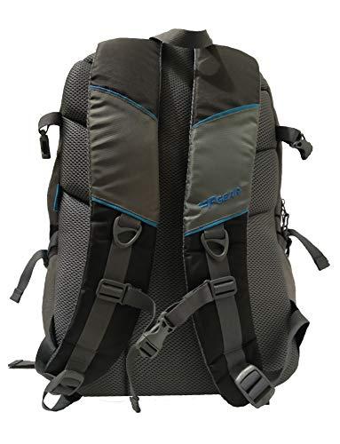 Best college bags for girl in flipkart in India 2020 F Gear Defender V2 45 Liters (Navy Blue, Pink) Rucksack Image 4