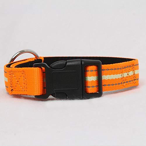 ne Seil Hundehalsband Medium Hundehalsband Seitenschäferhund Hundehalsband Set Reflektierendes Halsband @ Orange Halsband ohne Zugkraft _ Border Welpen, Erwachsene Hunde, allgemein ()