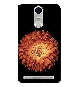 FUSON Orange Lotus Black Background 3D Hard Polycarbonate Designer Back Case Cover for Lenovo K5 Note :: Lenovo Vibe K5 Note Pro