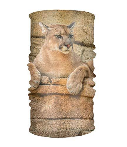 Women Headband Boho Animal Cougar Cats Style Head Wrap Hair Band -