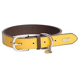 DO&G Collar de Cuero para Perros