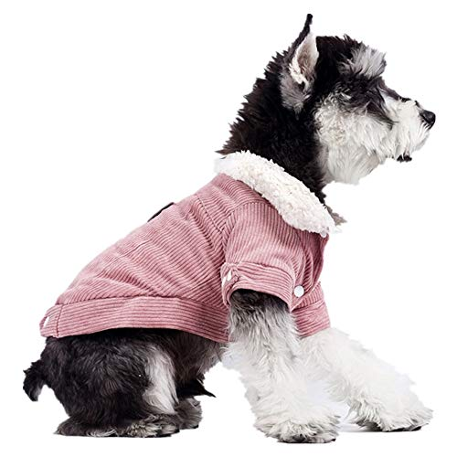Eyxia-Pet-Master Haustier-Kleidung for kleine und mittlere Hunde Winter Plus Velvet Wärme bequem Breathable Soft Cat Pet Supplies (Color : Apricot, Size : XS)