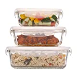 Femora Borosilicate Rectangular Glass Food Storage Container With Air Vent Lid-Set Of 3