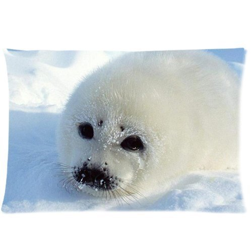 harp-seal-snow-zippered-pillow-cover-508-x-762-cm