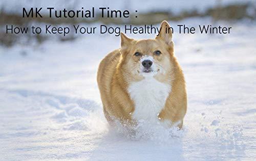 MonsterKill MK Tutorial Time:So halten Sie Ihren Hund im Winter gesund