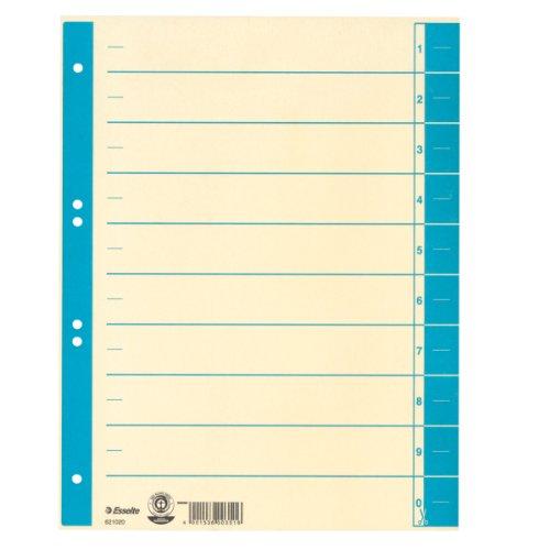 Preisvergleich Produktbild Leitz Trennblatt, A4, Karton, farbig bedruckt, hellblau