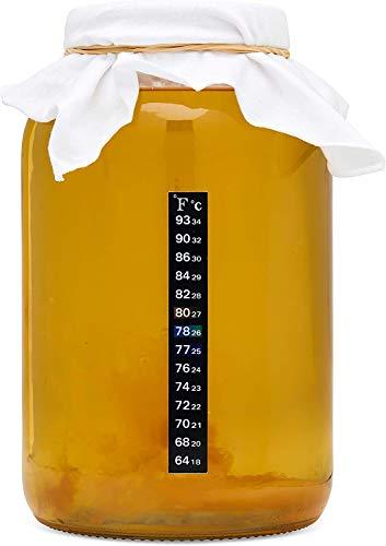kitchentoolz Kombucha Starter Kit mit Premium-Scoby Starter - Gallon Brewing Jar und Kunststoff-Deckel, Teebeutel, Temperaturanzeige, Bio-Zucker und vieles mehr -