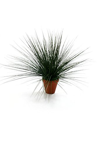 closer-to-nature-c019d-planta-de-hierba-artificial-60-cm