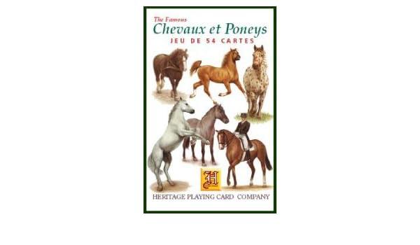 3d1370946cf9a Chevaux et Poneys Jeu de 54 Cartes  Amazon.fr  Jeux et Jouets