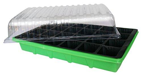 Flower 55046 55046-Invernadero Grande, 3 Unidades, Transparente/Verde 37.5x25x8 cm