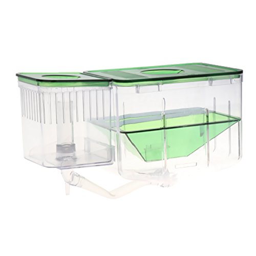 Homyl Aquarium Fisch Züchter Box Zuchttanks Isolation Box