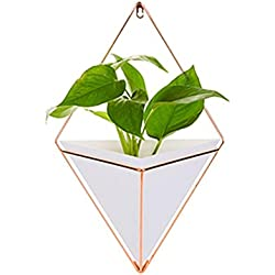 Blumentopf Wand Pflanztopf Geometrische Deko, Wandbehang Sukkulenten Pflanzentopf, Garten Hängen Dekor Container für Sukkulenten, Luftpflanze, Mini-Kaktus, Faux Pflanzen