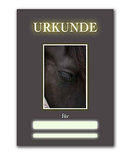 SEMINAR - und REIKI-URKUNDE, RU30, Urkunde, Reiki für Tiere, DIN A4, 250 gr. starkes Qualitätspapier, glänzend, 4-farbig