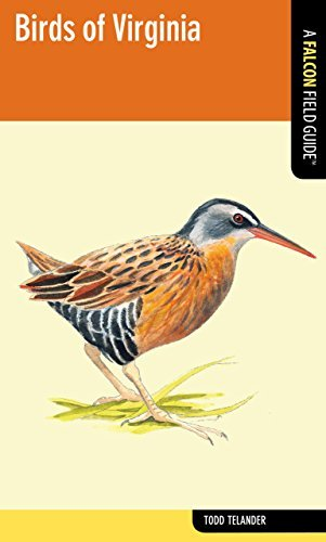 Birds of Virginia (Falcon Field Guide Series) by Todd Telander (2012-12-18)