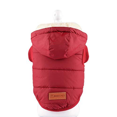 Amphia - Hundekleidung warme Mantel mit Kapuze Presse,Stilvolle Hund Winter weiche warme Mantel Puppy Fleece Jacke Kleidung(M,Wein)