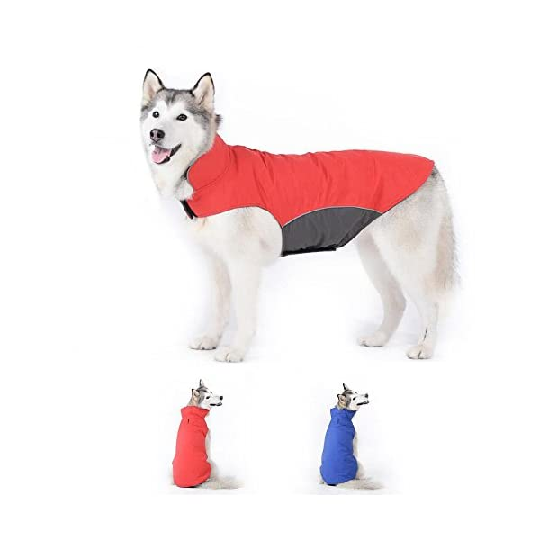 Bwiv Dog Coat Waterproof with Leash Hole Belly Protect Puppy Pet Vest Clothes Jacket Fleece Lined Velcro Lightweight Winter Outdoor 1
