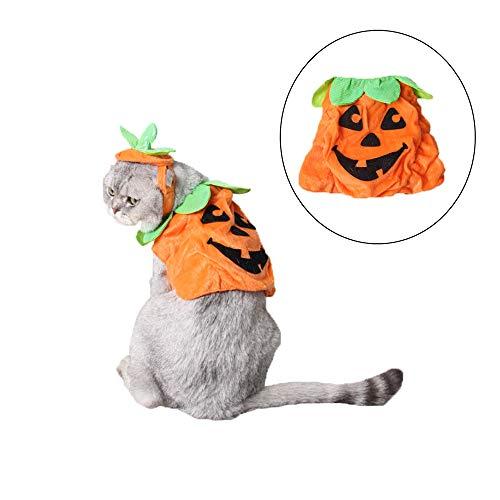 Treat Trick Und Kostüm - RENS Halloween Cute Pet Kürbis Kostüm + Hüte, Carnival Pet Festival Kostüme, Trick or Treat Kürbis Anzug für Hunde Katzen