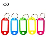 TRIXES Key Tags - Colour Coded Plastic Key Tags - with Paper Label Inserts - Pack of 50 Split Rin