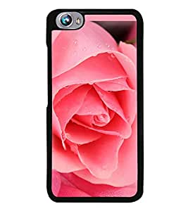 Pink Rose 2D Hard Polycarbonate Designer Back Case Cover for Micromax Canvas Fire 4 A107