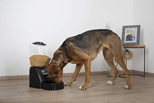 NUM'AXES 01810013 Comedero Eyenimal Automático para Perros - 5 kg