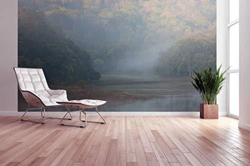 awallo Fototapete - Motiv «Nebel Indien» in Braun, Weiss | 400x250cm | XXL Bild-Tapete Wand-Bild Digitaldruck | hochwertige Vliestapete - Made in Germany | einfache Verarbeitung