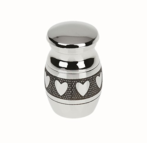 P Prettyia Recuerdo Cenizas de Cremación Urna Funeral Contenedor Jar Mini Small