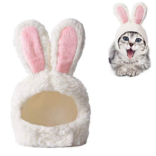 BIEE Katzen-Ostern-Kostüm, Katzen-Outfit verstellbare Größe Häschenohren Pet Easter ()
