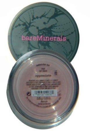 Bare Minerals Blush in Appreciate a Sorbet Shade by USA