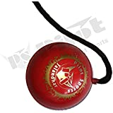 PS Pilot Sports Co Pilot- 2X Hanging Ball For Cricket Practice With Reaction String