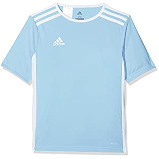 adidas Men's Entrada 18 Short Sleeve Jersey, Clear Blue/White, Large