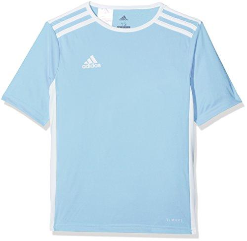 Adidas Entrada 18 JSY Teamtrikot Camiseta