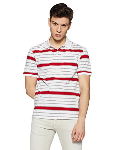 Peter England Men's Striped Regular Fit T-Shirt (PKW417002288L_LightgreyWithWhite_Large)