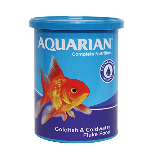 Free UK Delivery by Amazon Fish & Aquatic Pets - Best Reviews Tips