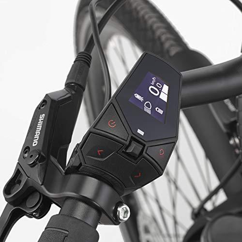 fischer-e-bike-city-cita-6-0i-2019-platingrau-matt-28-rh-44-cm-brose-mittelmotor-50-nm-36v-akku-im-rahmen-6