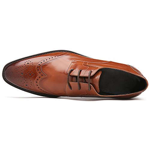 GIFENNSE Men's Classic Modern Oxford Wingtip Lace Dress Shoes (7UK/41, brown)