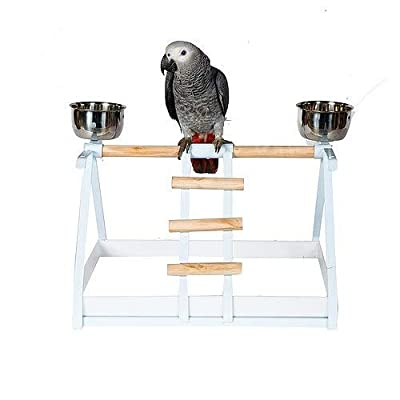 Tabletop Parrot Stand with Feeders - White or Black by Parrot Essentials