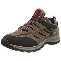 TIMBERLAND Sadler Pass F/L Low Goretex, Men's Trekking & Hiking Shoes, Brown (Shitake), 8 UK (42 EU)