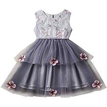 95f9e3e72 Beikoard Vestido de Niña,Sin Mangas Flor Costura de Encaje Malla Vestido de  Niña de