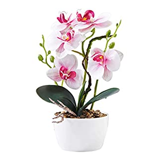 Alicemall Flower in Vase Silk Flower Arrangement Decoration Garden Artificial Silk Flowers (Pink 1)