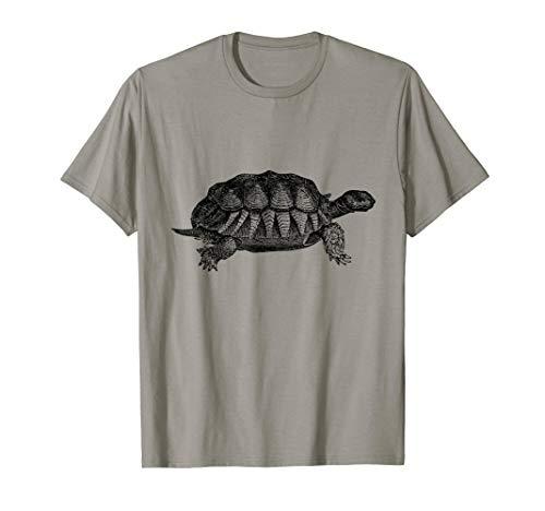 Old Tortoise Print  T-Shirt