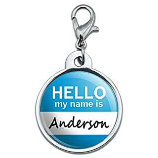 Chrome Plated Metal Small Pet ID Dog Cat Tag Hello My Name Is AM-BA - Anderson