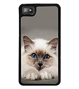 printtech Cute Cat Kitten Blue Eyes Back Case Cover for BlackBerry Z10